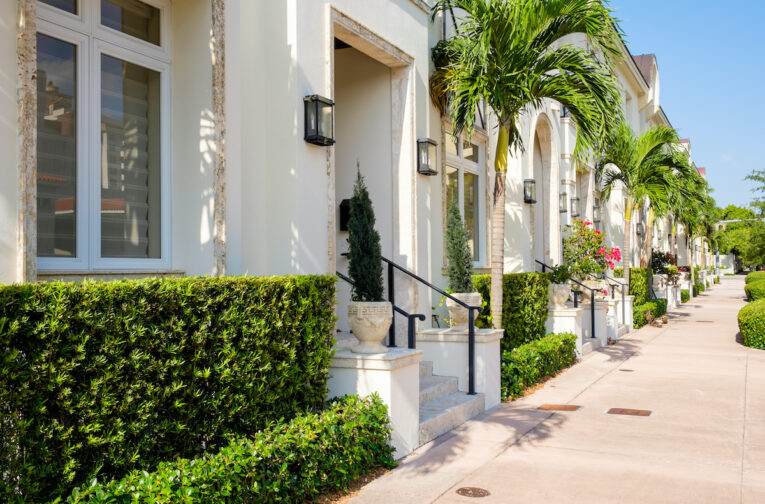 Florida urban townhomes with palm trees and trimmed bushes out front